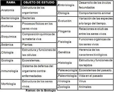 LA BIOLOGIA DISCIPLINAS DE LA BIOLOGIA