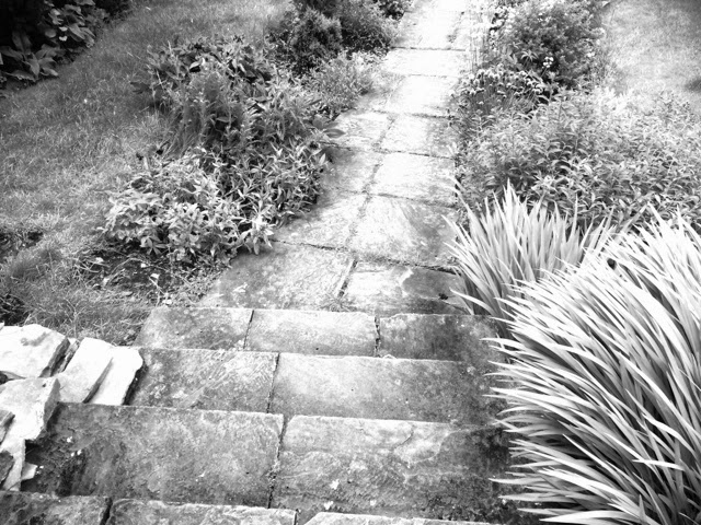black and white path and steps