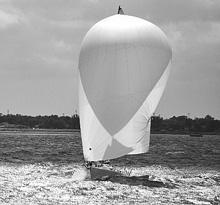 J/80 sailing under spinnaker