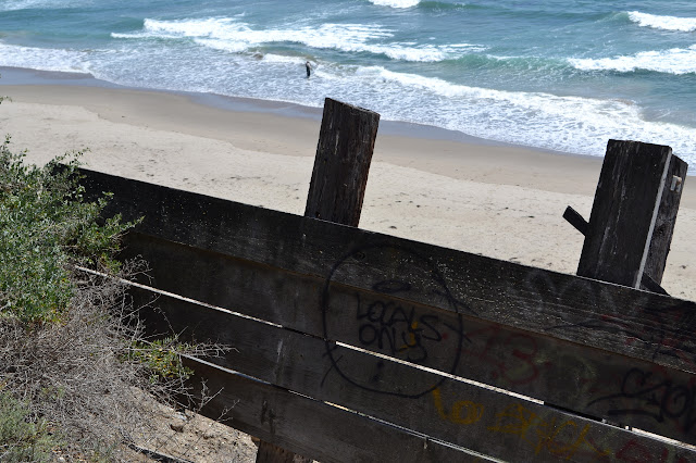 wooden retaining wall shouting 'locals only'