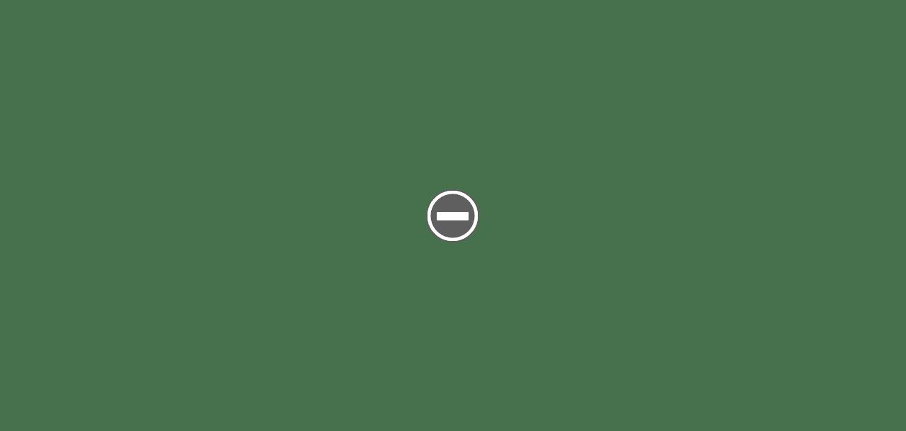 Blaireau metal TADE IMG_0377+%2528Custom%2529