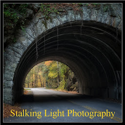 Stalking Light Photography