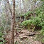 Rocks along Birwanna Track (118024)