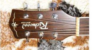 glowka Budowa gitary