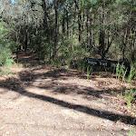 Ridge Trail track head (238472)