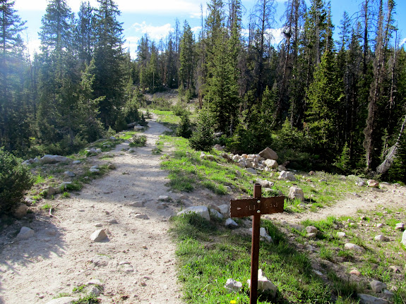 Signed junction to Cliff Lake