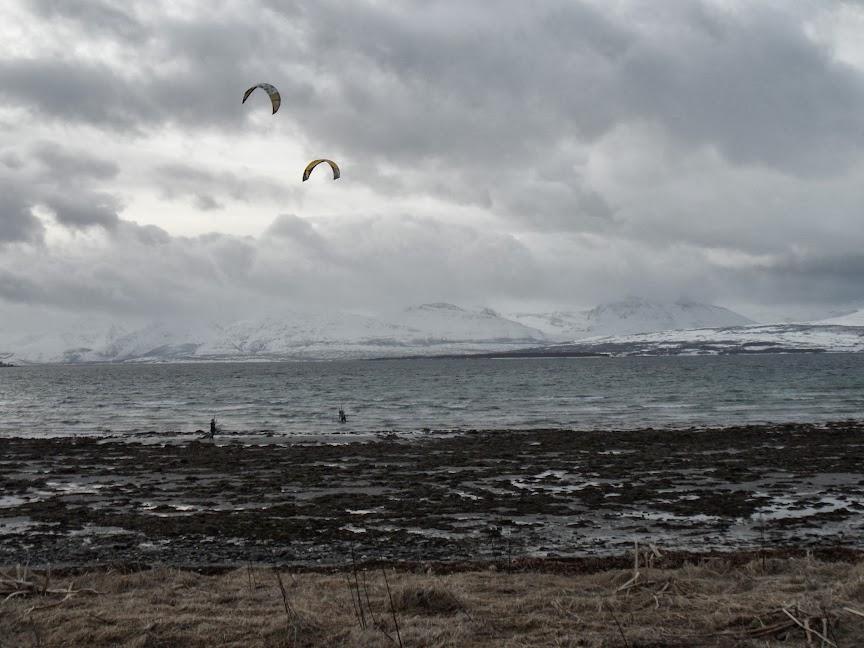 Norvège mars 2014 SAM_1541