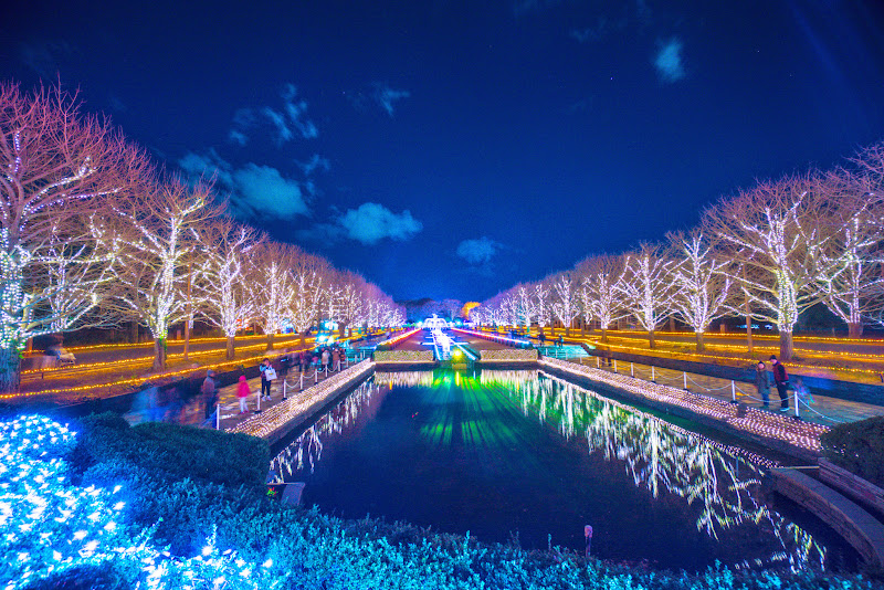 昭和記念公園 Winter Vista Illumination 写真7