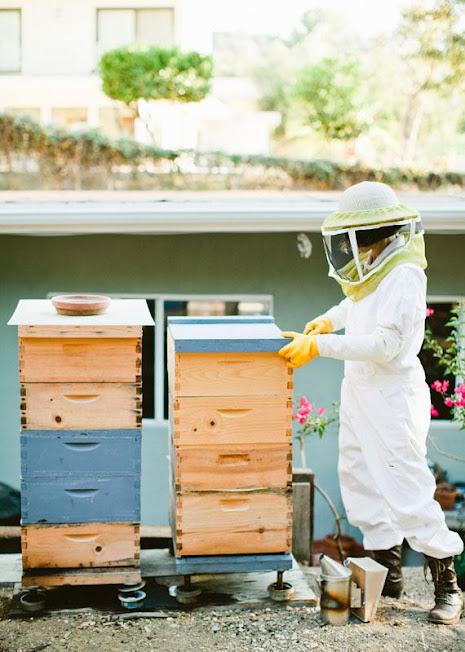 Roxana Beekeeping