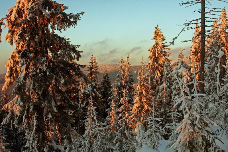 apus soare iarna zăpadă Munții Vrancei munte Covasna Lăcăuți schi