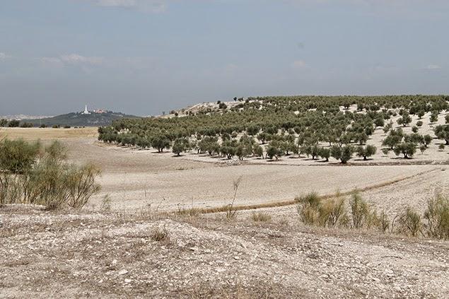 Cerro de Los Ángeles y Vértice Cabeza Fuerte desde Mojón 29