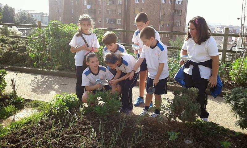 Visitamos los Huertos Urbanos del Parque Altamira
