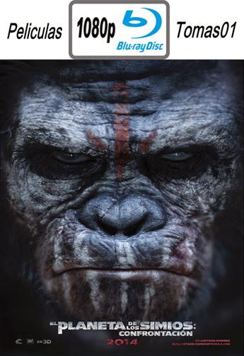 El Planeta de los Simios: Confrontacion (2014) BRRip 1080p