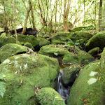 Cascade into Wollombi Brook Pool (364670)
