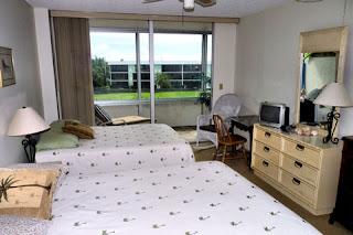 Guest Bedroom/ 2 Double Beds
