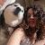 Foto del profilo di Chiara Saitta