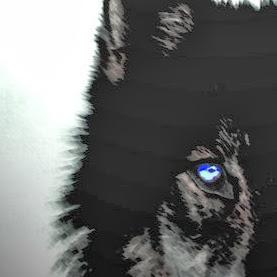 M-Wolf