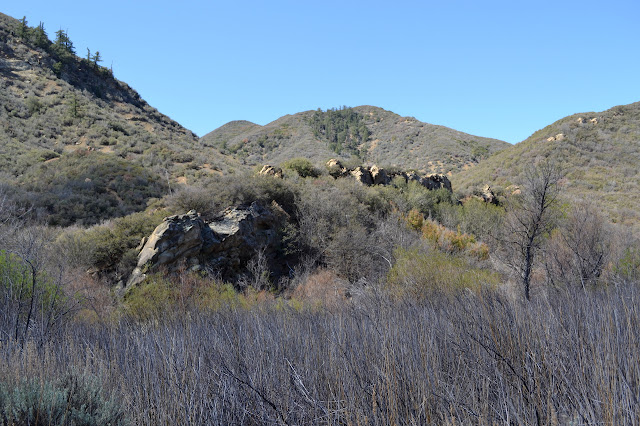rock outcrop to the south