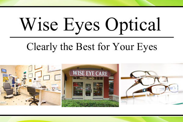 Optometrist Fort Lauderdale Wise Eyes Optical Logo