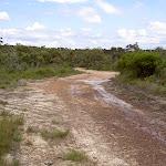 Rocky service trail (33749)