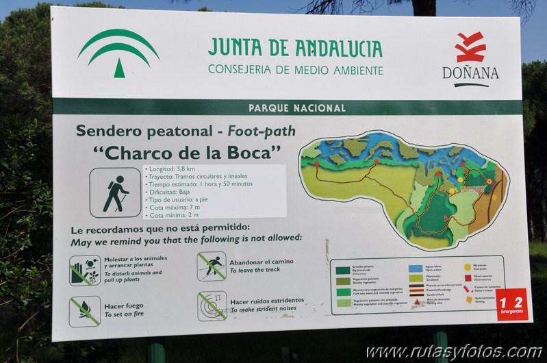 La Rocina - Charco de la Boca