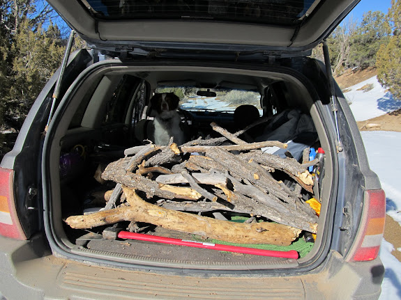 Jeep full of pinyon to burn in the campfire
