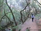 Cataract Trail