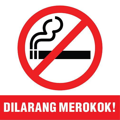 introduction smoking essay