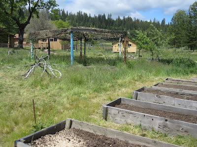 Tawonga Garden - Before