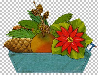 kt_christmas-plant2.jpg