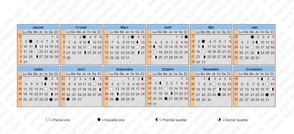 calendrier lunaire 1993