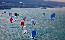 J/105s and J/120s- one-design sailboats- sailing San Francisco