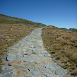 Stone pathway towards the summit of Mt Kosciuszko (266120)