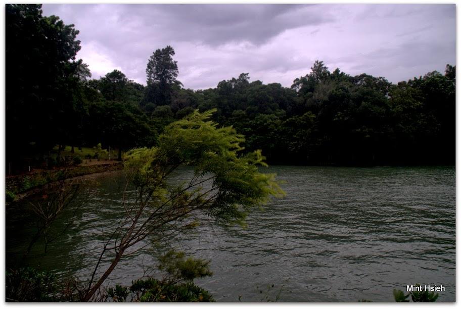 澄清湖 (圖11枚)