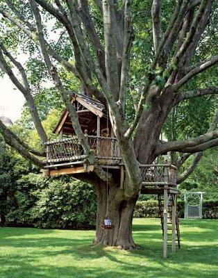 Una casa en un arbol taringa - Casas de madera en arboles ...