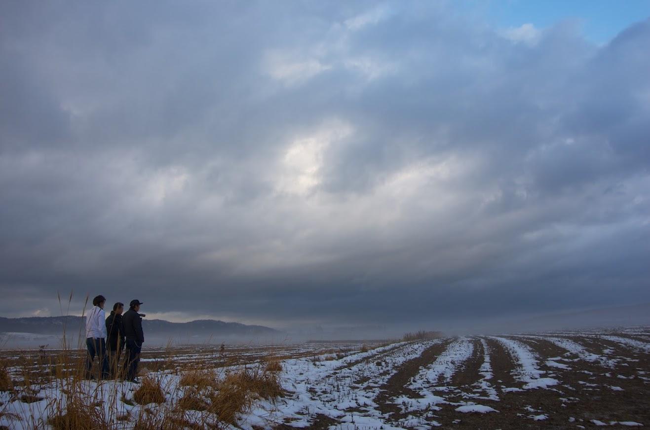 雪に覆われた黒千石大豆の畑に魅入るスタッフの皆さん