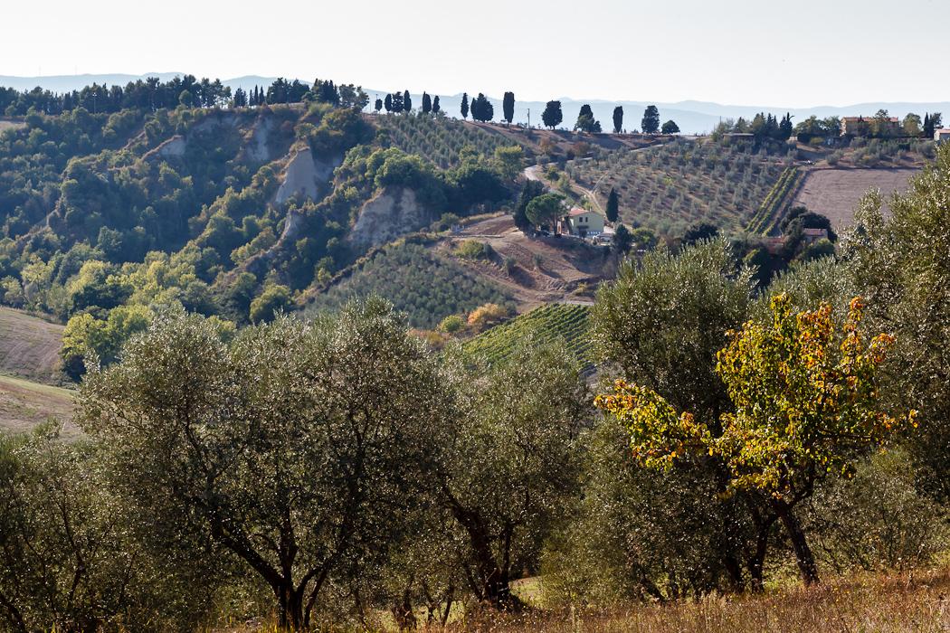 знаменитые пейзажи Тосканы.