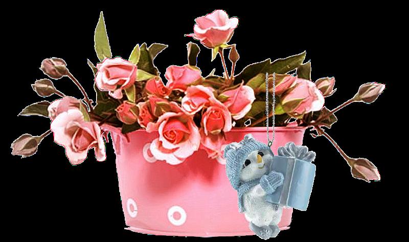 vasilha de rosas