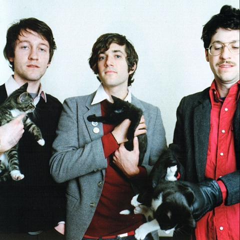 The members of We Are Scientists and cats
