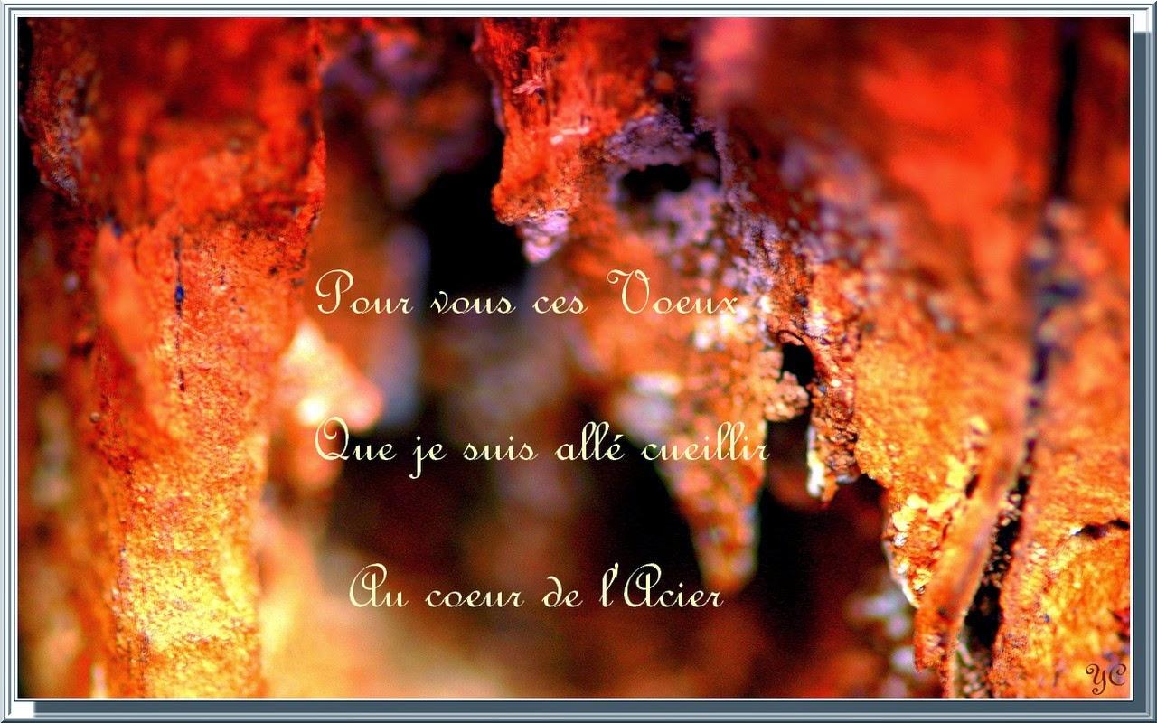 ANNONCES DU CALENDRIER Voeux+2012-001