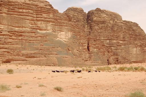 Иордания. Ровная скала