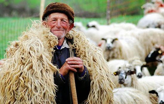 Пастух. Фото: Михаэла Мунтян