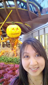 The Shops at the Crystals, some of the autumn themed horticulture art and a selfie