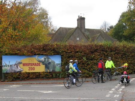 """Whipsnade"