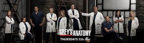 Download - Grey's Anatomy 10 Temporada