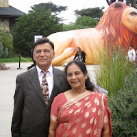 Meena Mehta contact information