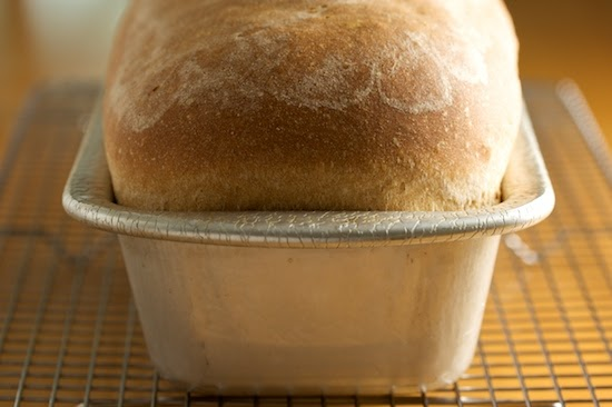 Mikelles Meals: Quick Rising Whole Wheat Bread