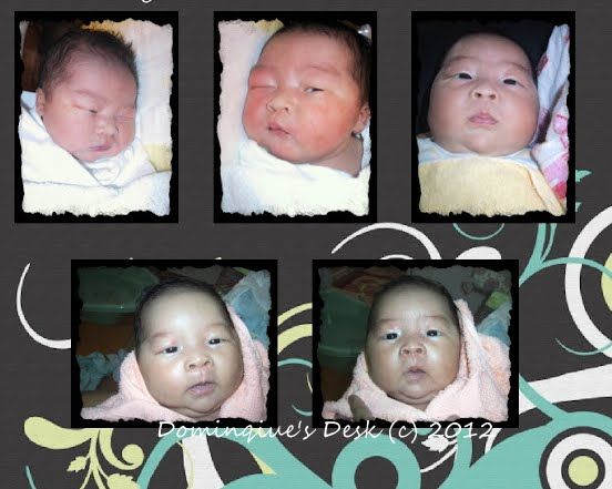 Monkey boy a a baby
