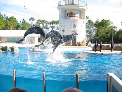 Orlando Florida Seaworld