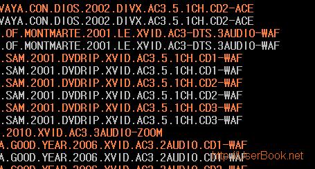 인터넷 사이트에서 5.1ch, ac3, dts 동영상으로 좋은 음질로 영화 보는 방법